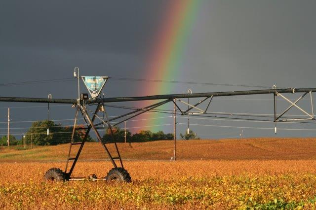rainbow pivot